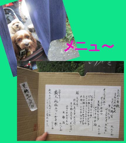 2012.6.24めにゅ~