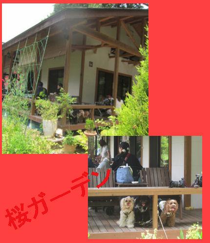 2012.6.24桜ガーデン長瀞