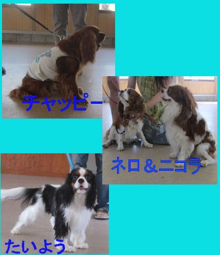 2012.7.16自己紹介2
