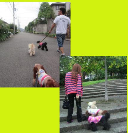 2012.7.22お散歩