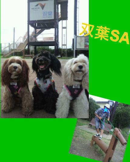 2012.8.15双葉~