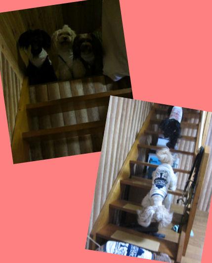 2012.8.17階段