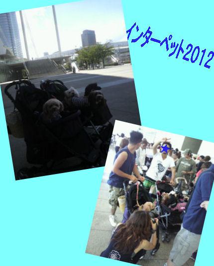 2012.8.26いんたー