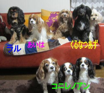 2012.4.22メンバー