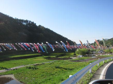 2012.5.5こいのぼり