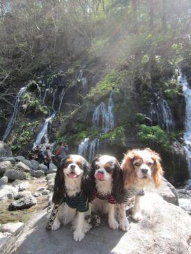 2012.5.5コニレノアン滝