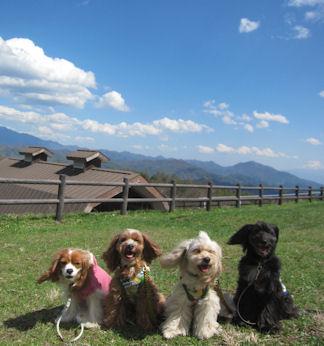 2012.5.5富士山うつらないなー