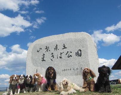 2012.5.5まきば公園
