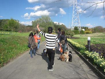 2012.5.5フィオーレ散歩
