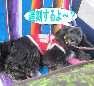 2012.5.21ちこくするよ?