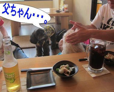 2012.5.27モヒ整え中