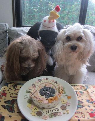 2012.6.22ケーキ見過ぎ!