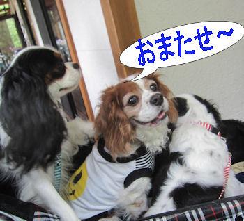 2012.6.24おまたせ~