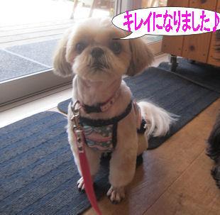 2012.8.2すっきり~