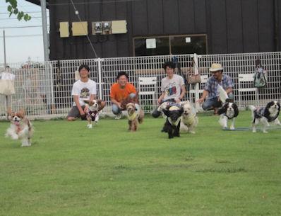 2012.8.13よ~いドン