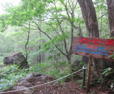 2012.8.15スヌーピー岩