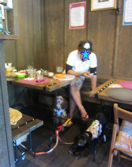 2012.8.16ネオカフェにて