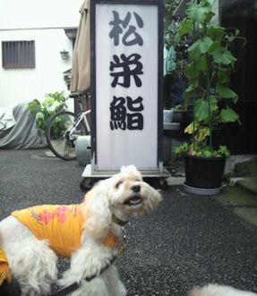 2012.7.6松栄さん