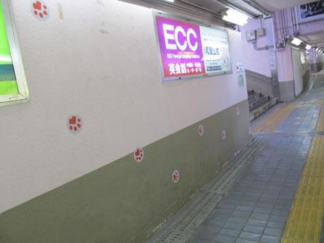 02_20121012112943.jpg