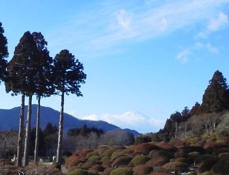 2013010414260000 山のホテルより富士山