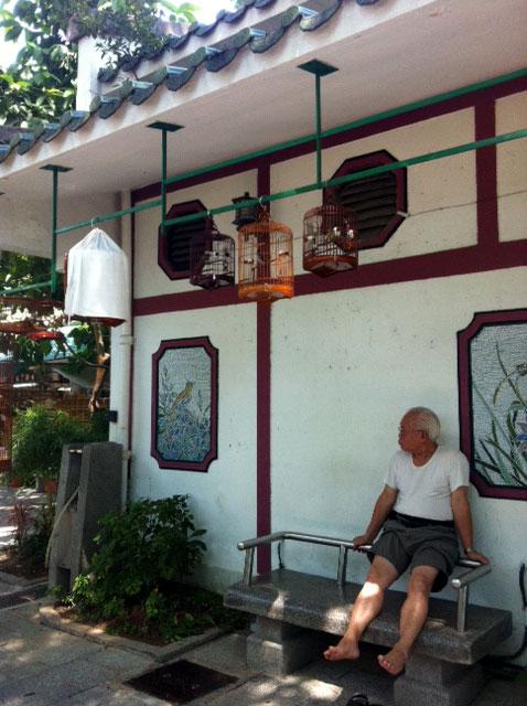 くすり屋さん.comブログ-香港鳥マーケット1
