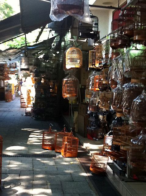 くすり屋さん.comブログ-香港鳥マーケット3