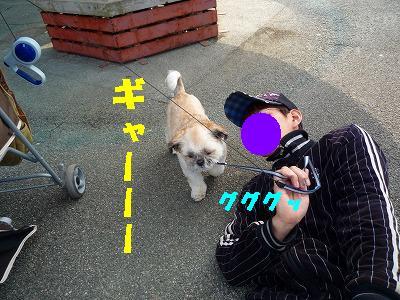 w 072