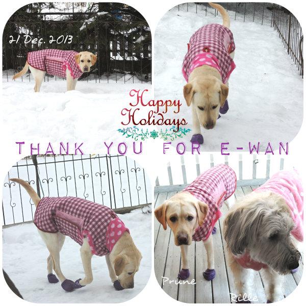 e-wanさんありがとう!!