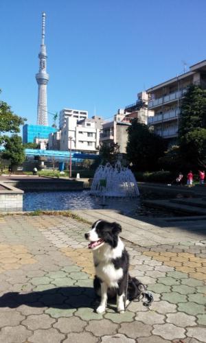 20121001_091037.jpg