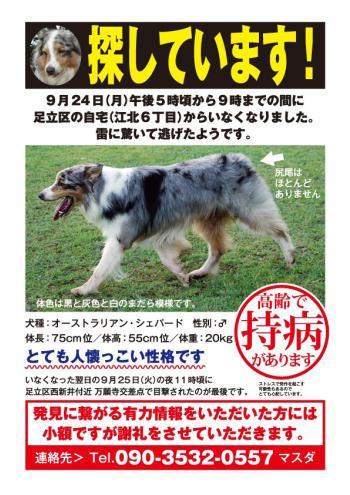 toranosuke_Web.jpg