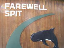 Farewell kafe (7)