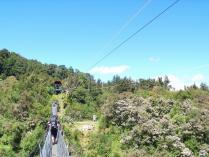 吊り橋とさきん (4)