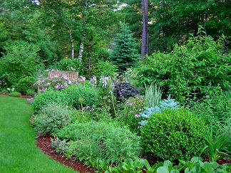 Backyard landscape designs creating a natural privacy for Landscape design for privacy