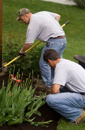 Top 3 reasons to hire a landscaper wycepypa for Professional landscaping