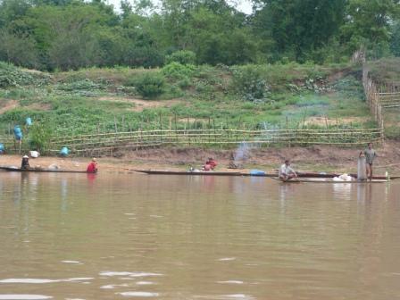 ボートから見た川岸の風景