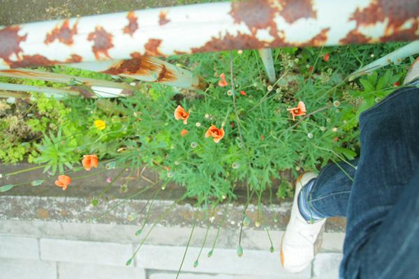 photo-01.jpg