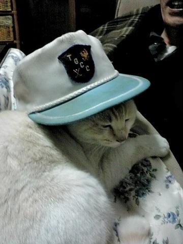 金ちゃん帽子
