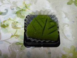 緑寿・新芽