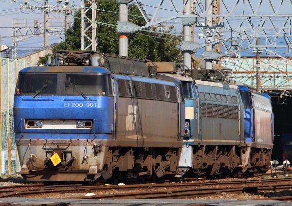 AM9P0000700.jpg