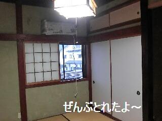 CIMG0781-1.jpg