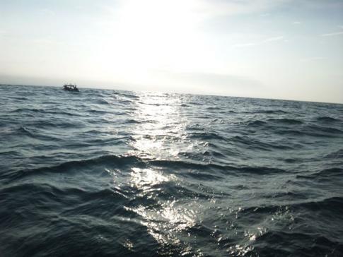 予報と違う海