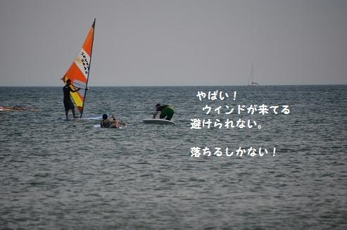 381e.jpg