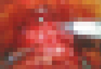 ダヴィンチの画面映像_モザイク処理