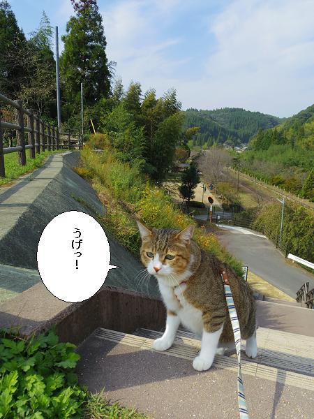 嘉例川駅16