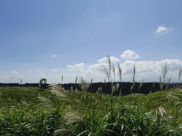 瀬の本高原4