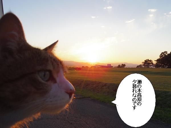 瀬の本高原9