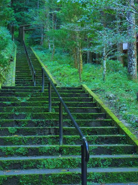 秋元神社7