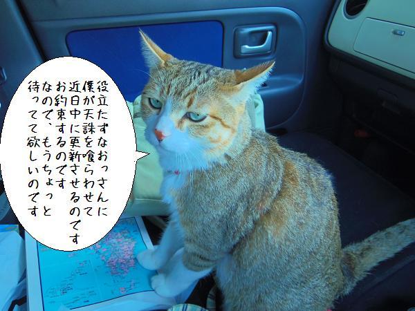 まいど(´・ω・`) 2