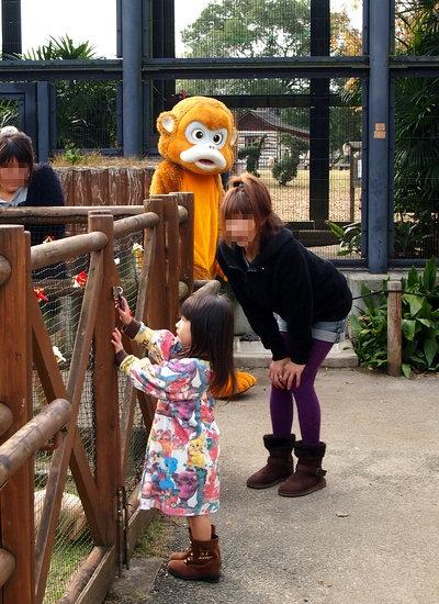 241123 動物園7