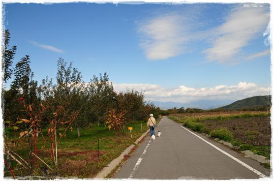 石田農園④